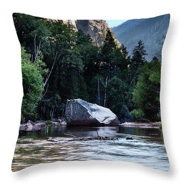 Mirror Lake- Throw Pillow
