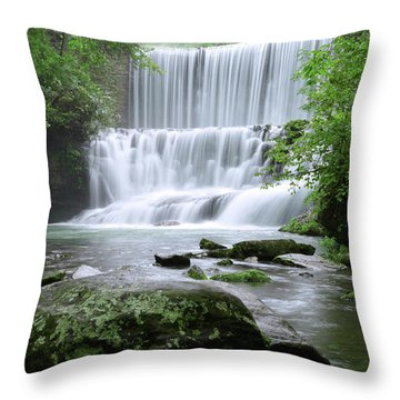 Throw Pillow featuring the photograph Mirror Lake by Renee Hardison