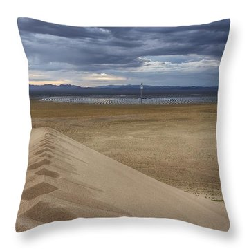 Mirror Mirror In The Desert Who Is The Smartest Of Them All Throw Pillow