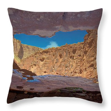 Mirror Pool Throw Pillow