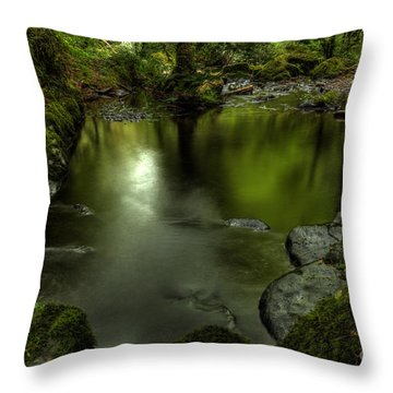 Mirror Pool Throw Pillow