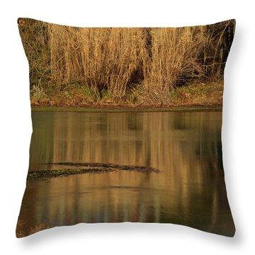 Mirror Spring 2 Throw Pillow by Douglas Barnett