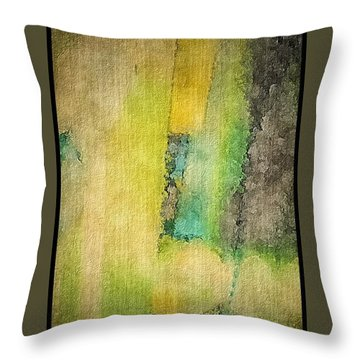 Mirror Throw Pillow by William Wyckoff