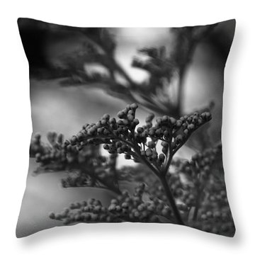 Mirrored In Sterling Throw Pillow by Linda Shafer