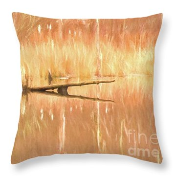 Mirrored Reflection Throw Pillow by Laurinda Bowling