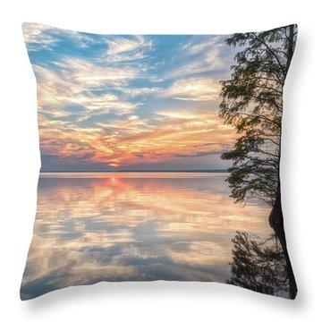 Mirrored Throw Pillow