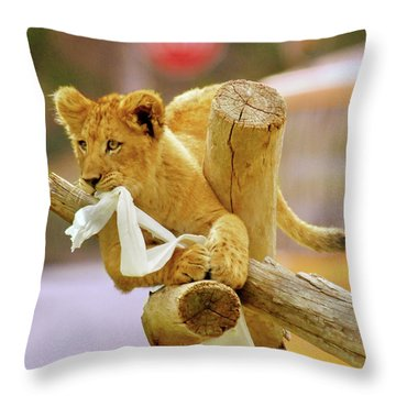 Throw Pillow featuring the photograph Mischief by Howard Bagley