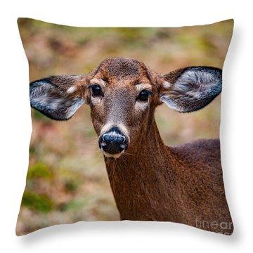 Miss Deer 1 Throw Pillow