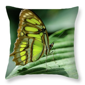 Miss Green Throw Pillow
