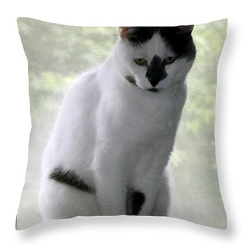 Throw Pillow featuring the photograph Miss Jerrie Cat With Watercolor Effect by Rose Santuci-Sofranko