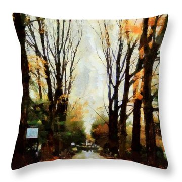 Throw Pillow featuring the photograph Missing You - Rainy Day Park by Janine Riley