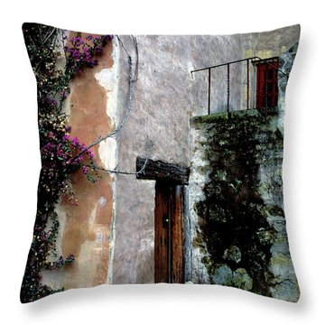 Mission Bougainvillea Throw Pillow