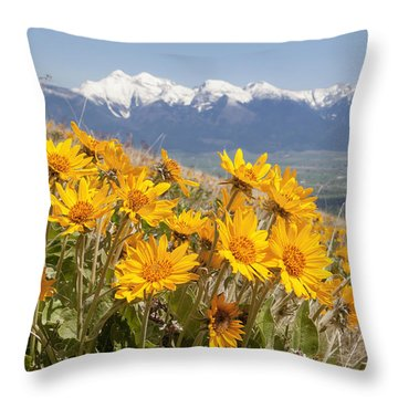 Mission Mountain Balsam Blooms Throw Pillow by Jack Bell