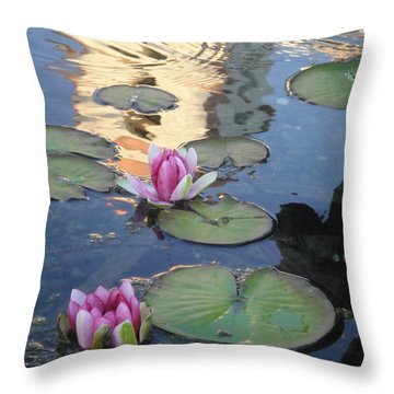 Mission Reflected Throw Pillow