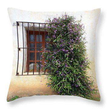 Mission Window With Purple Flowers Throw Pillow by Carol Groenen