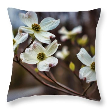 Missouri Dogwoods Throw Pillow