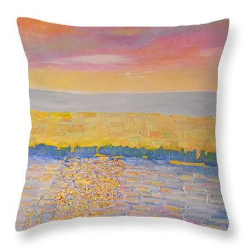 Missouri River Throw Pillow