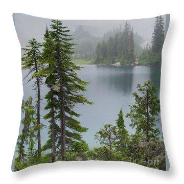 Mist At Snow Lake Throw Pillow
