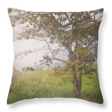 Misty Landscape Throw Pillow