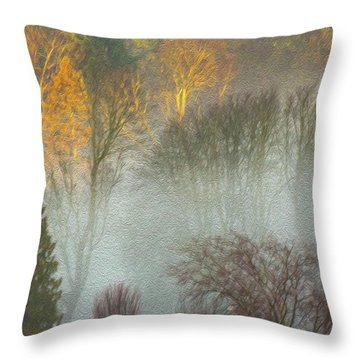 Mist In The Park Throw Pillow
