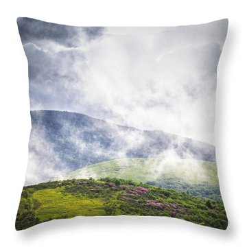 Rhododendrons - Roan Mountain Throw Pillow