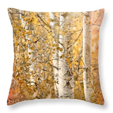Misted Throw Pillow