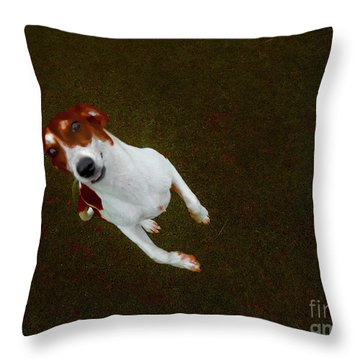 Mister Bitsa Throw Pillow