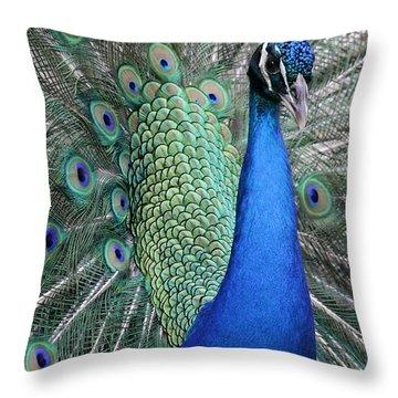 Mister Peacock Throw Pillow