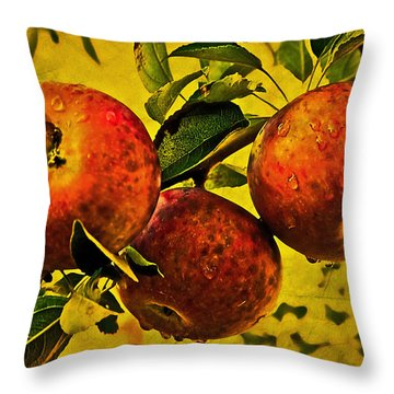 Mister's Apples Throw Pillow