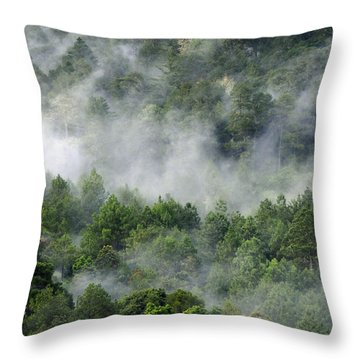 Mistico De San Jose De Pacifico Throw Pillow by Skip Hunt