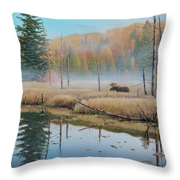 Mists Of Dawn Throw Pillow