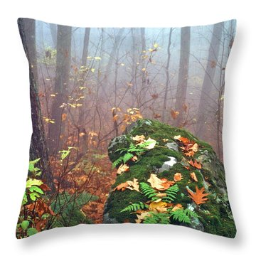 Misty Autumn Woodland Throw Pillow by Thomas R Fletcher