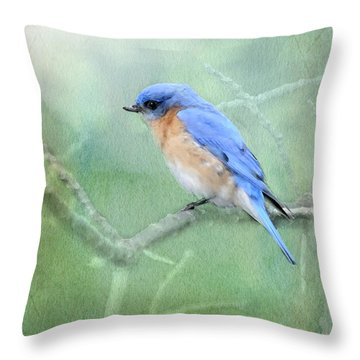 Throw Pillow featuring the photograph Misty Blue by Betty LaRue