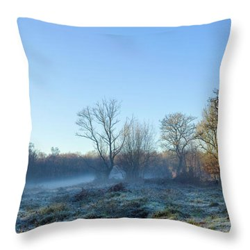 Misty Clearing Throw Pillow