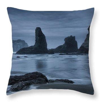 Misty Coast Throw Pillow