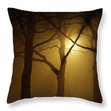 Misty Cross Throw Pillow by Erik Tanghe