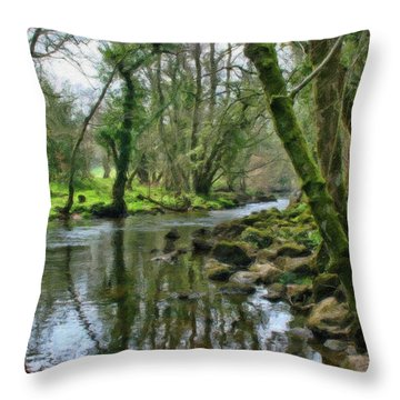 Misty Day On River Teign - P4a16017 Throw Pillow