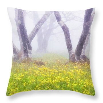 Misty Dolly Sods Throw Pillow