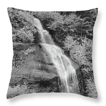 Misty Fjord Falls Throw Pillow
