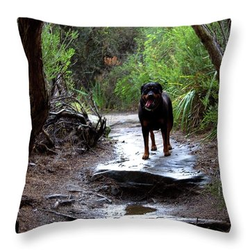 Misty I Will Always Remember Your Smile Throw Pillow