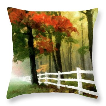 Misty In The Dell P D P Throw Pillow by David Dehner