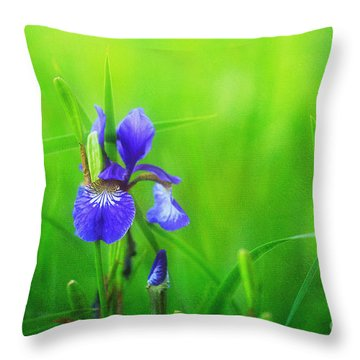 Misty Iris Throw Pillow