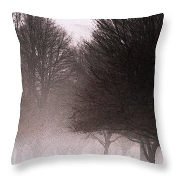 Misty Throw Pillow by Linda Shafer