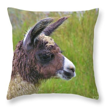 Throw Pillow featuring the photograph Misty Macchu Picchu Llama by Michele Penner