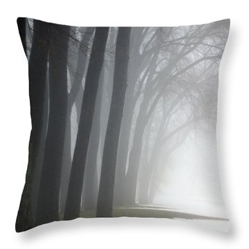 Misty Moments Throw Pillow by Linda Mishler