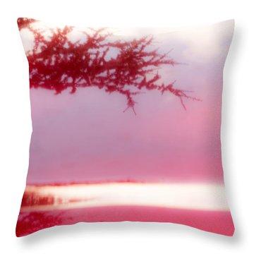 Misty Morn Throw Pillow