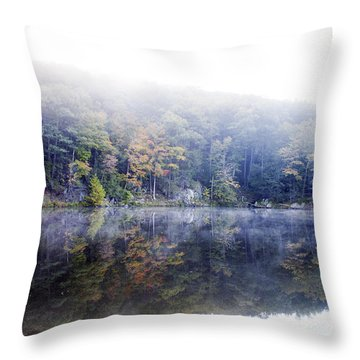 Throw Pillow featuring the photograph Misty Morning At John Burroughs #2 by Jeff Severson