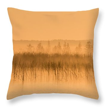 Misty Morning Floating Bog Island On Boy Lake Throw Pillow by Patti Deters