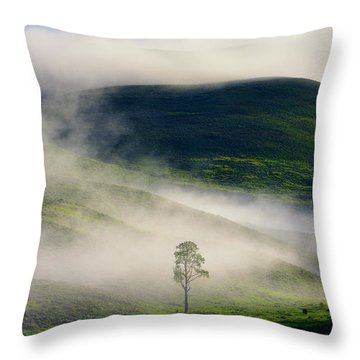 Throw Pillow featuring the photograph Misty Morning by Greg Norrell