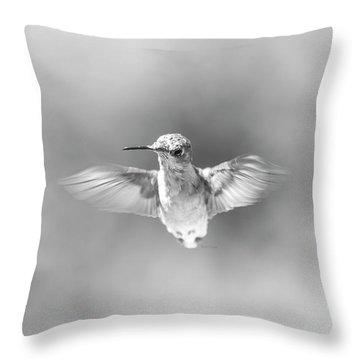 Misty Morning Hummingbird Throw Pillow